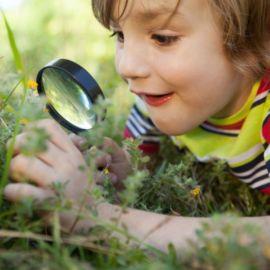 Stage dété pour enfants - nature