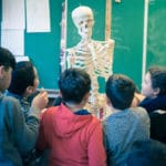 Le Squelette-16