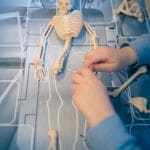 Le Squelette-8